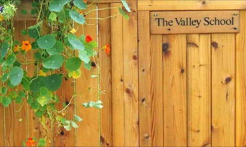 Free for All Images - valley1