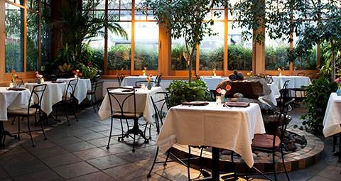 Free for All Images - atrium-cafe-flora