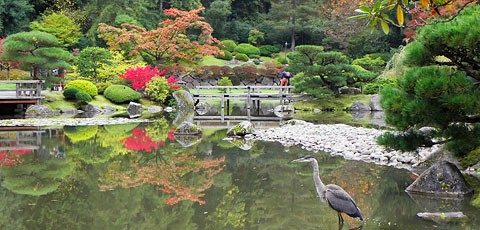 Free for All Images - Japanese Garden 2